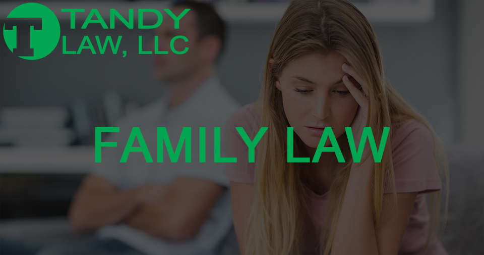 Tandy Law LLC Shelbyville family law attorney