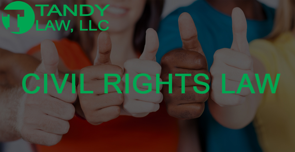 Tandy Law LLC diversity civil rights law@0,5x